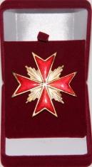 Знак Лейб - Гвардии Казачий полк